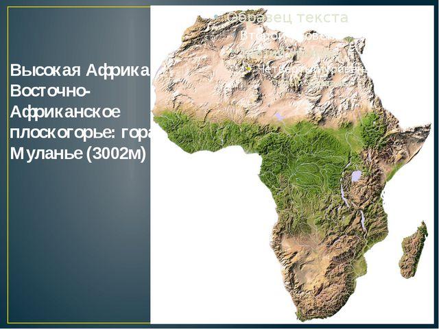 Высокая Африка. Восточно-Африканское плоскогорье: гора Муланье (3002м)