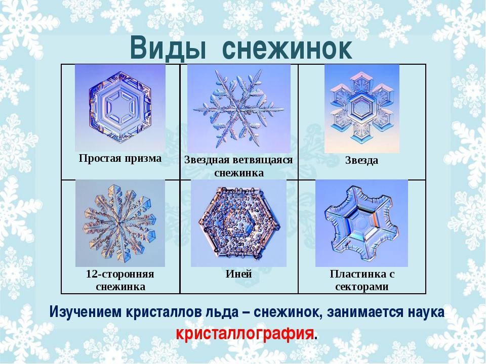 Виды снежинок Изучением кристаллов льда – снежинок, занимается наука кристалл...