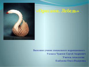 Выполнил ученик специального коррекционного 9 класса Чудинов Сергей Андрееви