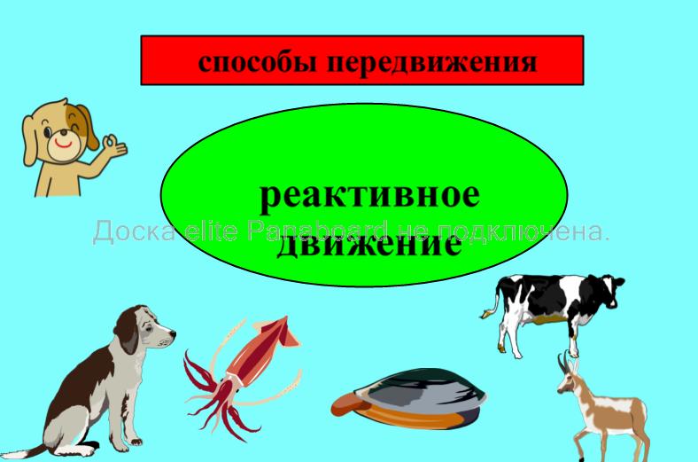 hello_html_68f75e6a.png