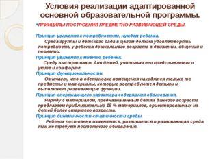Условия реализации адаптированной основной образовательной программы. ПРИНЦИП