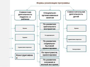 Формы реализации программы Совместная деятельность педагога и ребенка Специал