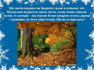 Ще зовсім недавно ми бродили з вами в осіньому лісі. Під ногами шурхотіло опа