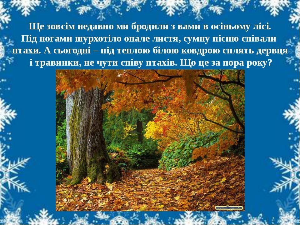 Ще зовсім недавно ми бродили з вами в осіньому лісі. Під ногами шурхотіло опа...