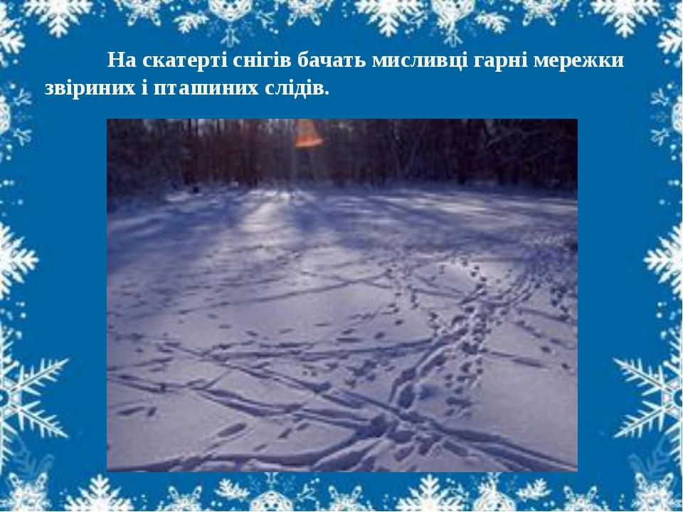 На скатерті снігів бачать мисливці гарні мережки звіриних і пташиних слідів.