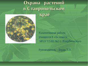 Охрана растений в Ставропольском крае Коллективная работа учащихся 8 «Б» клас