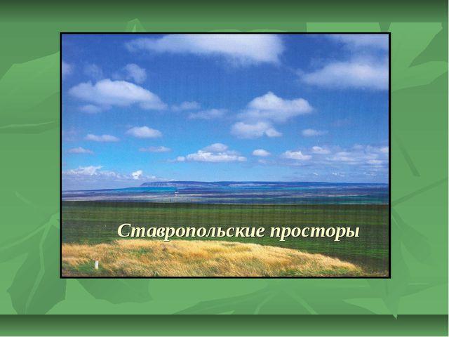 Ставропольские просторы