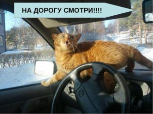 НА ДОРОГУ СМОТРИ!!!!