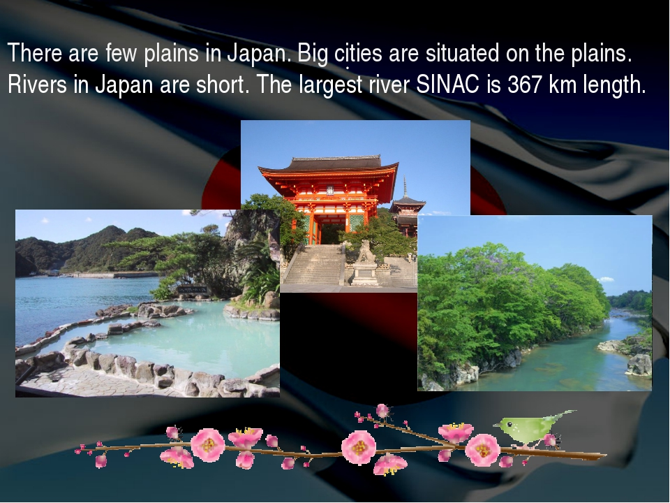 . There are few plains in Japan. Big cities are situated on the plains. River...