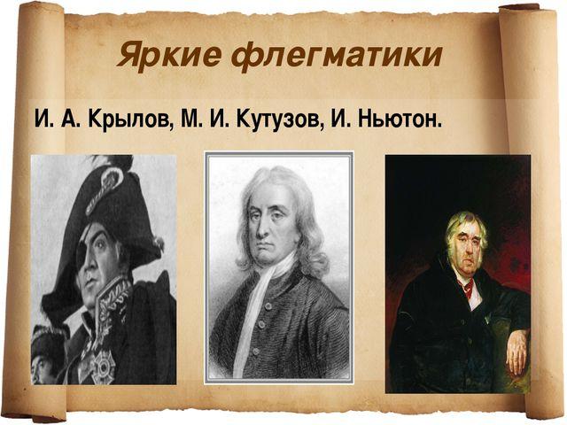 Яркие флегматики И. А. Крылов, М. И. Кутузов, И. Ньютон.