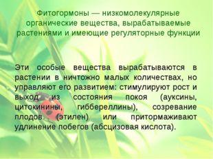 Эти особые вещества вырабатываются в растении в ничтожно малых количествах,