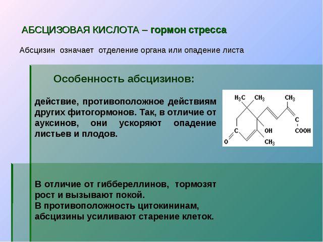 АБСЦИЗОВАЯ КИСЛОТА – гормон стресса Абсцизин означает отделение органа или о...