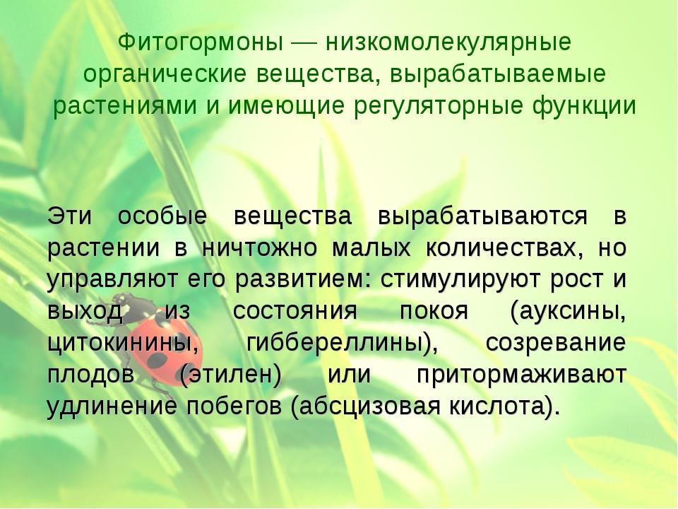 Эти особые вещества вырабатываются в растении в ничтожно малых количествах,...
