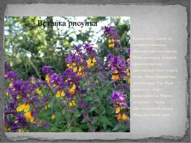 Кроме того, одним из главных символов Иванова дня был цветок Иван-да-марья,...