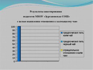 Результаты анкетирования педагогов МКОУ «Зургановская СОШ» с целью выявления