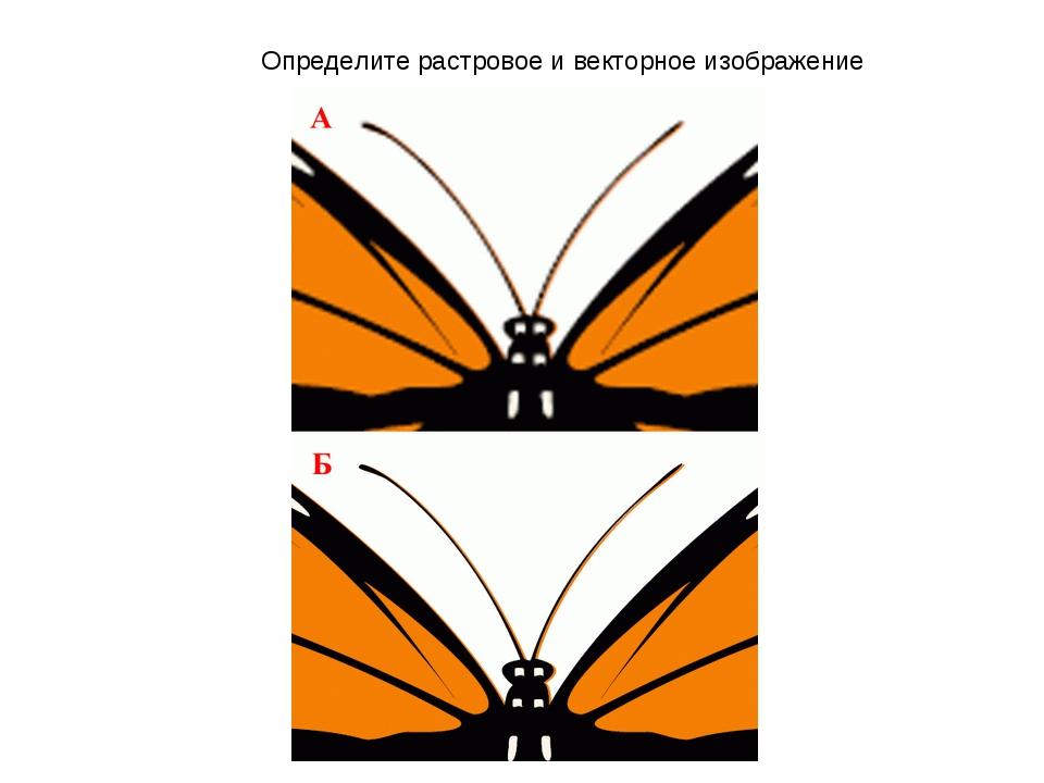 Определите растровое и векторное изображение