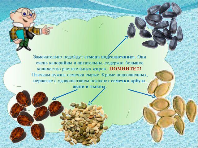 Замечательно подойдут семена подсолнечника. Они очень калорийны и питательны,...