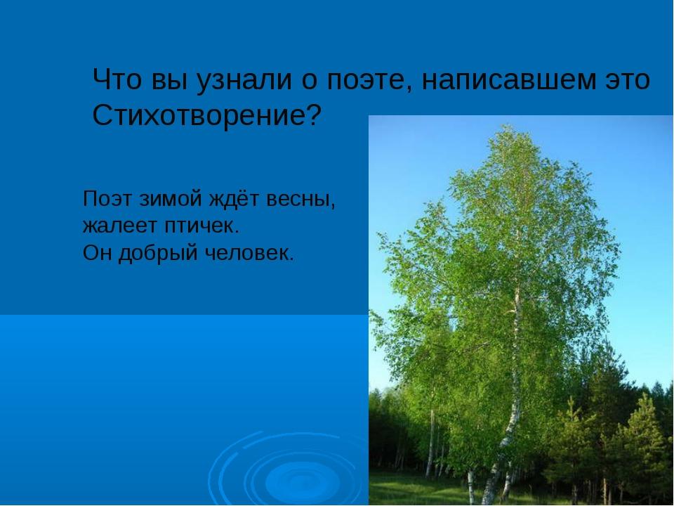 Что вы узнали о поэте, написавшем это Стихотворение? Поэт зимой ждёт весны, ж...