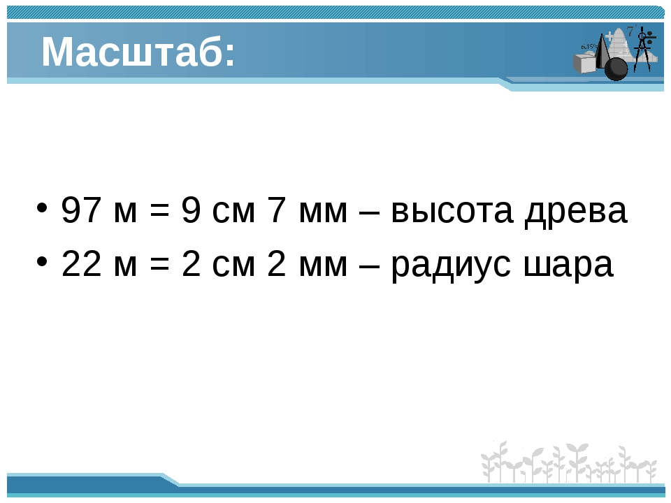 Масштаб: 97 м = 9 см 7 мм – высота древа 22 м = 2 см 2 мм – радиус шара