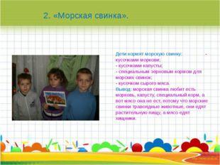 Дети кормят морскую свинку: - кусочками моркови; - кусочками капусты; - спец