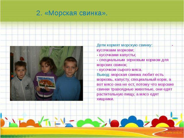 Дети кормят морскую свинку: - кусочками моркови; - кусочками капусты; - спец...