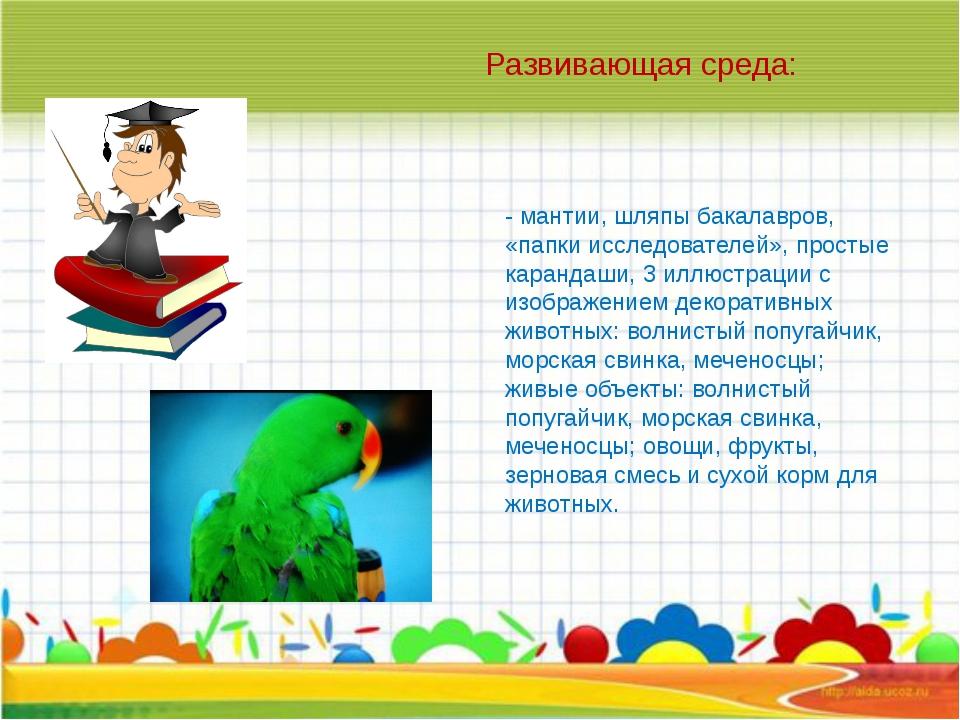 - мантии, шляпы бакалавров, «папки исследователей», простые карандаши, 3 иллю...
