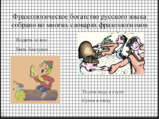 Фразеологическое богатство русского языка собрано во многих словарях фразеоло
