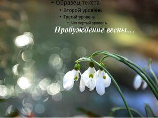 Пробуждение весны…
