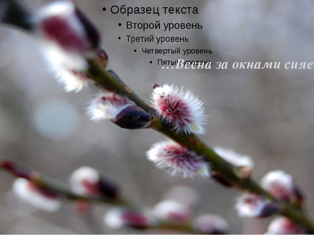 …Весна за окнами сияет