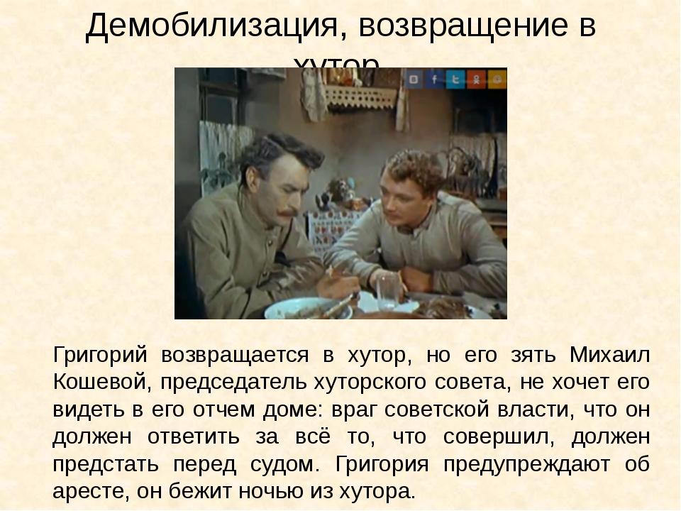 Демобилизация, возвращение в хутор. Григорий возвращается в хутор, но его зят...