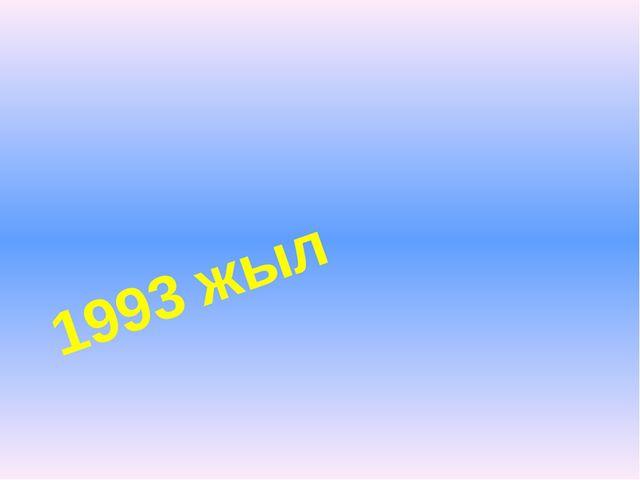 1993 жыл