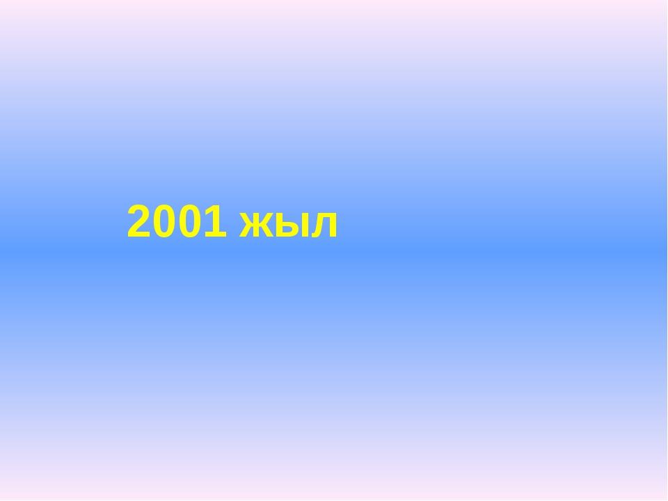 2001 жыл