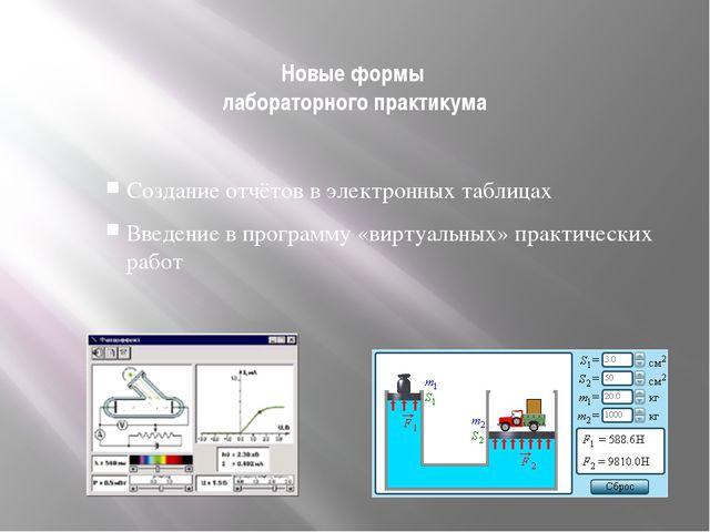 Новые формы лабораторного практикума Создание отчётов в электронных таблицах...