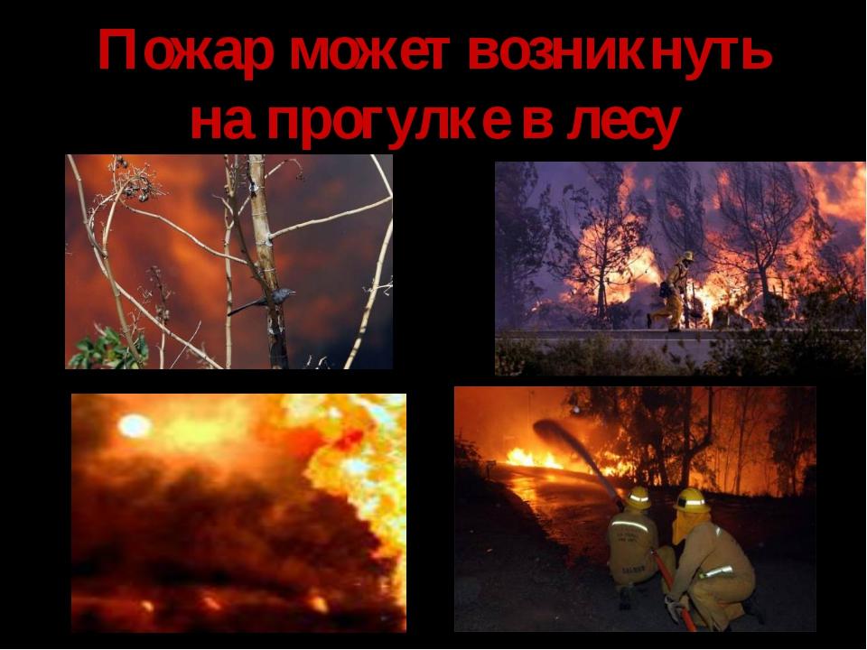 Пожар может возникнуть на прогулке в лесу