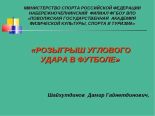 Шайхутдинов Дамир Гайнетдинович, МИНИСТЕРСТВО СПОРТА РОССИЙСКОЙ ФЕДЕРАЦИИ НАБ