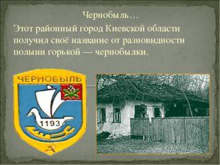 Чернобыль… Этот районный город Киевской области получил своё название от разн