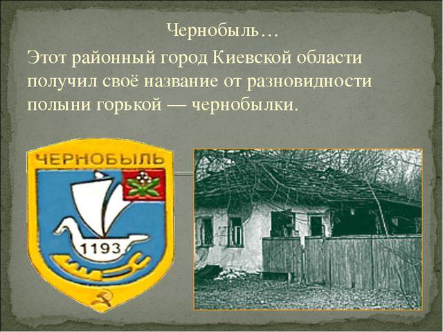 Чернобыль… Этот районный город Киевской области получил своё название от разн...