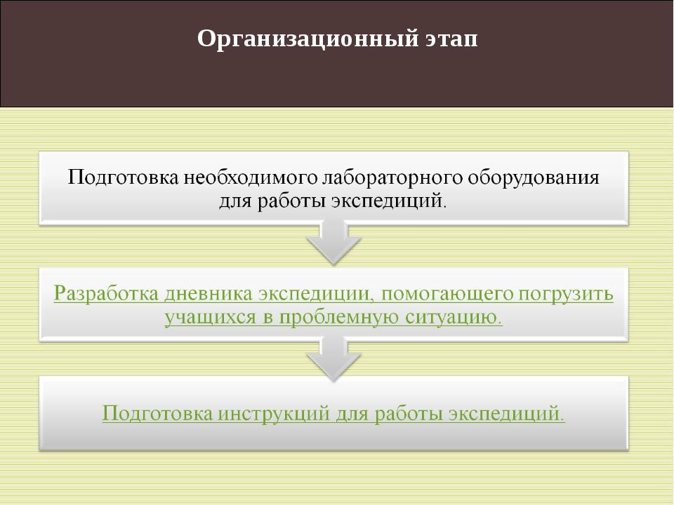 Организационный этап