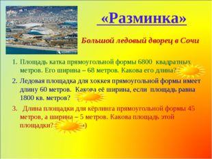 Большой ледовый дворец в Сочи Площадь катка прямоугольной формы 6800 квадрат