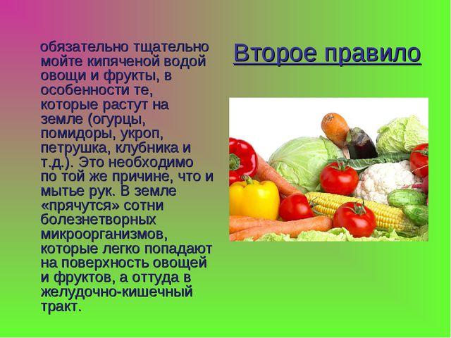 Второе правило обязательно тщательно мойте кипяченой водой овощи и фрукты, в...