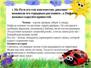 1. На Руси его ели повсеместно, римляне называли его смрадным растением , а