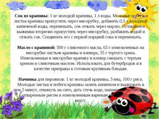 Сок из крапивы: 1 кг молодой крапивы, 1 л воды. Молодые побеги и листья крап