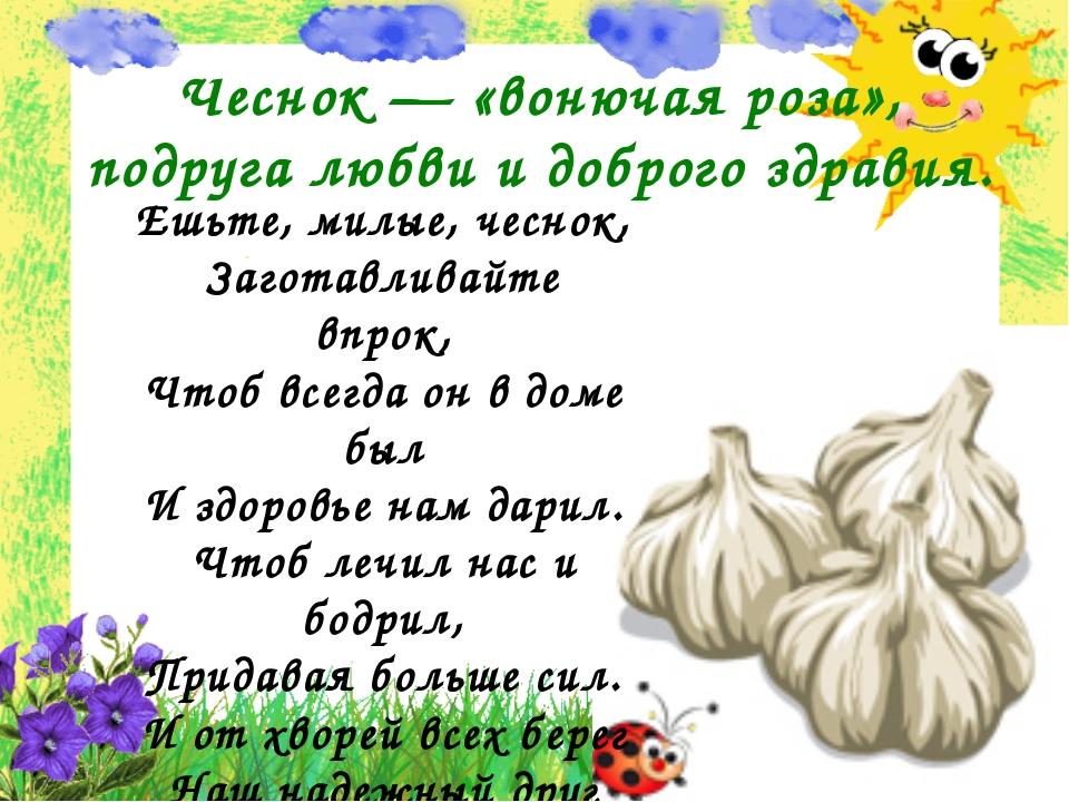 Чеснок — «вонючая роза», подруга любви и доброго здравия. Ешьте, милые, чесн...