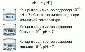 http://static.interneturok.cdnvideo.ru/content/konspekt_image/16471/f558d279a1949e632ee7ef0ffc2be590.jpg
