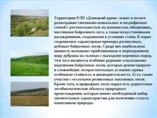 Территория РЛП «Донецкий кряж» лежит в полосе разнотравно-типчаково-ковыльных