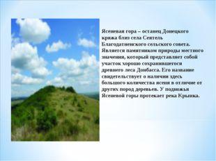 Ясеневая гора – останец Донецкого кряжа близ села Сеятель Благодатненского се