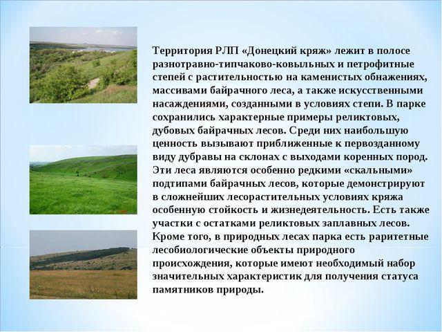 Территория РЛП «Донецкий кряж» лежит в полосе разнотравно-типчаково-ковыльных...