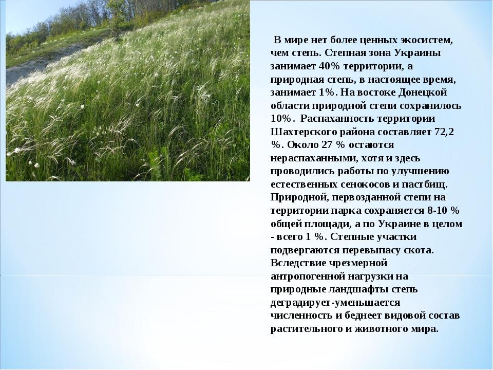 В мире нет более ценных экосистем, чем степь. Степная зона Украины занимает...