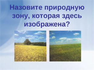 Назовите природную зону, которая здесь изображена?