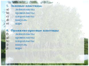 5. Зеленые пластиды. лейкопласты хромопласты хлоропласты вакуоль ядро 6